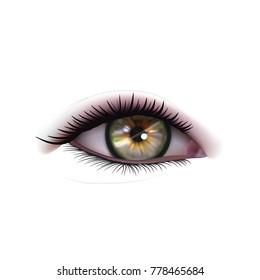 Realistic Woman Eye On White. EPS10 Vector