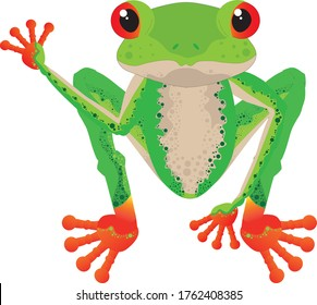 realistically animated red-eyed tree frog