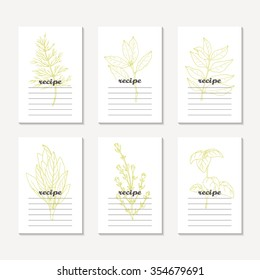 Recipe cards collection with hand drawn spicy herbs. Sketched dill, bay leaf, curry, sage, basil, thyme. Culinary template, kitchen background. Vector illustration
