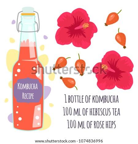 Recipe Kombucha Detox Cocktail Dog Rose Stock Vector Royalty Free