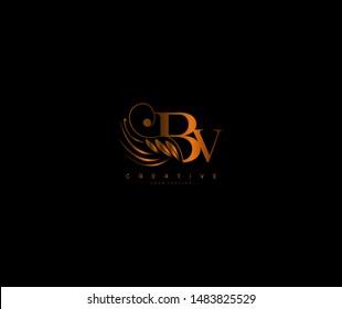 Recolor Initial BV letter luxury beauty flourishes ornament monogram logo