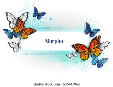 Rectangular banner with  blue morpho and orange monarch butterflies on white background.