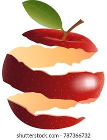 Red apple peel - Illustration