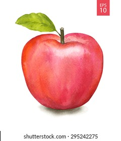 Red apple. Watercolor drawing. Vector illustration