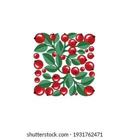 Red berries and green leaves on a white background.