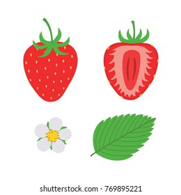red berry strawberry and a half of strawberry. Set flower, petal, strawberry