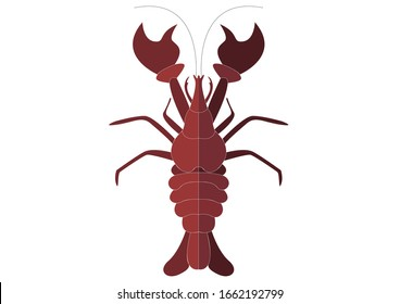 Red big lobster on white empty background