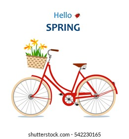 The red bike with daffodils. Hello spring. Vector illustration.