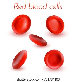 Red blood cells isolated on white background. Vector illustration.