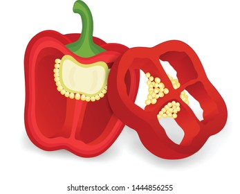 Red capsicum with piece of capsicum vector illustration