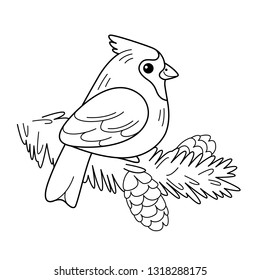cardinals coloring pages with multiplication | Baby Cardinal Images, Stock Photos & Vectors | Shutterstock