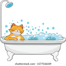 Red cat takes a bath filled with foam and bubbles, happy face