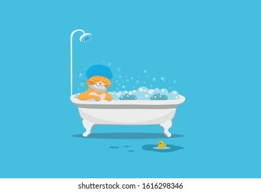A red cat takes a bath filled with foam and bubbles, in a dark blue shower cap, a happy face, on a dark blue background, a yellow duck swims on the floor on the floor