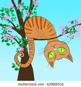 Red cat in a tree