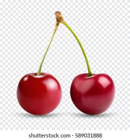 Red cherry. Two ripe berries with stalk. Realistic vector illustration with transparent shadows isolated on plaid background. Sweet fruits. 3d vector icons set for recipe web site, design and business