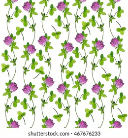 Red clover, shamrock wild field flower hand drawn vector color sketch isolated on white, Vector seamless pattern, graphic floral texture background for cosmetic, design package tea, textile, wallpaper