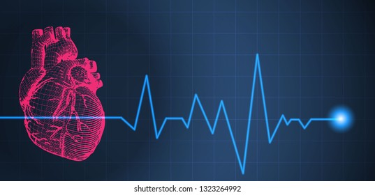 Diagram of the Human Heart Images, Stock Photos & Vectors ...