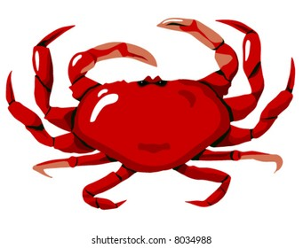 The Red Crab is highly detailed original artwork.  The vector file is in easy edit layers and is AI-EPS8 format.