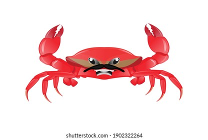Red crab, sea creature. Colorful cartoon character. red crab vector illustration. Sea creature in flat design. Shell crab icon isolated on white background. Water animal with claws