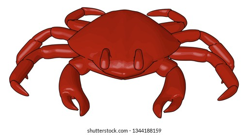 A red crab is a type of shellfish lives in fresh water in on land and ocean also Also called lobster used as seafood for meat purpose vector color drawing or illustration