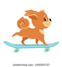Red dog rides a blue skateboard. Color vector illustration for design, print on t-shirt, bag, notebook, card.