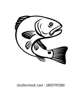 Red Drum Redfish Channel Bass Puppy Drum or Spottail Bass Jumping Up Black and White Retro
