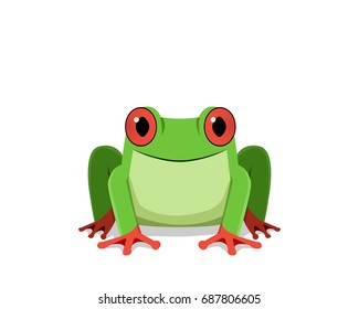 Red eye frog, Front view, vector