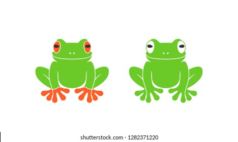 Red eye frog. Isolated frog on white background. EPS 10. Vector illustration