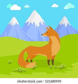 Red fox vulpes standing on the meadow in the mountains. Cute wild animal with flattened skull, upright triangular ears, pointed snout, and long bushy tail. Cartoon banner. Vector design illustration