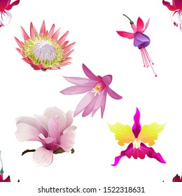 Red Fuchsia. Pink Protea. Pink and Purple Fuchsia Bella. Pink Magnolia. Pink Orchid. Purple Hatiora. Vector illustration. Seamless background pattern. Floral botanical flower. Wild leaf wildflower.
