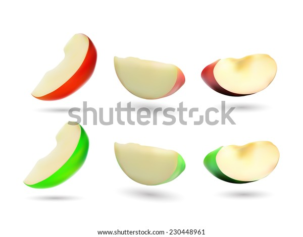 Red and green apple slices - vector