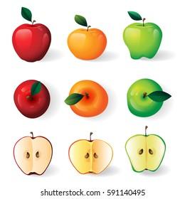 Red, green, yellow apples illustration, apple halves on white