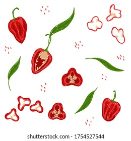 Red habanero pepper pattern. Red habanero chili pepper vector illustration set. Whole habanero, slice, cut, rings, leaves