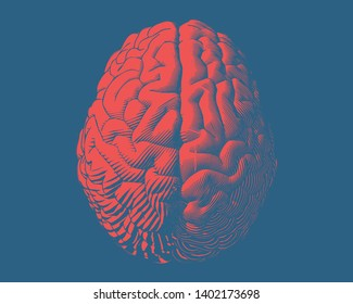 Red hemispheres human brain engraving typeb top view illustration isolated on deep blue background