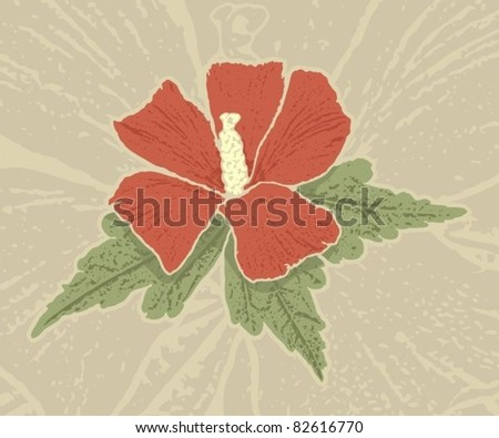 Red hibiscus flower with grunge shading on grunge beige background.