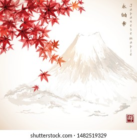 Red japanese maple leaves and Fujiyama mountain. Traditional Japanese ink wash painting sumi-e in vintage style. Autumn illustration.Hiieroglyphs - eternity, freedom, happiness, zen.