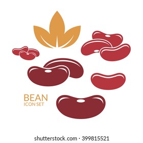 Red kidney bean. Vector illustration