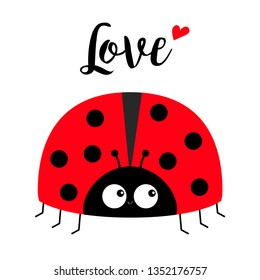 Red lady bug ladybird icon. Love greeting card with heart. Happy Valentines Day. Cute cartoon kawaii funny baby character. Flat design. White background. Vector illustration