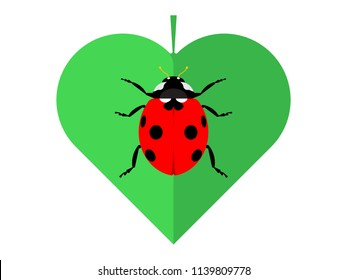 Red ladybug on green leaf. Vector illustration in flat style.