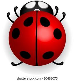 Red ladybug vector.