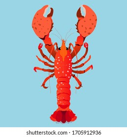 Red lobster isolated hand-drawn vector illustration. Modern red lobster with big claws design for web and print. Expensive seafood concept. Underwater animals.