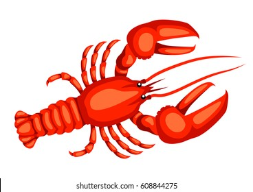 Red lobster. Isolated illustration of seafood on white background.