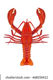 Red Lobster top view Illustration Isolated on white background. Editable Clip Art.