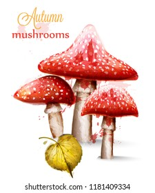 Red mushrooms watercolor Vector isolated on white backgrounds