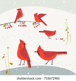 Red Northern Cardinal birds on snow poster. Cute flat cartoon. Winter birds of backyard city garden. Stylized animal sign. New year event banner background. Christmas wonderland greeting vector design