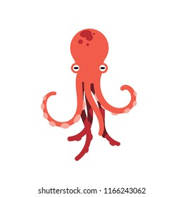 Red octopus isolated vector illustration on white background. Cute octopus vector. Marine life and animals concept. Cute sea monster, underwater predator