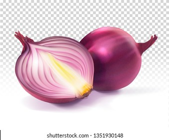 Red onion sliced and whole. Vector realistic illustration on transparent background.