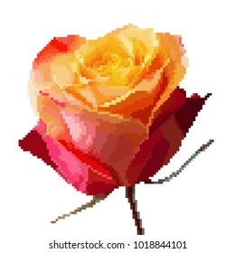 Red, orange, pik rose in the pixel art, 8 bit, 16 bit