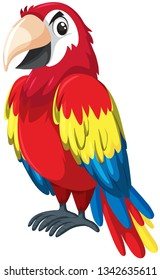 A red parrot character illustration