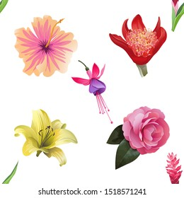 Red and Pink Ginger. Pink Hibiscus. Red Haemanthus Blood Lily. Yellow Lilium. Pink Balsam. Pink and Purple Fuchsia Bella. Vector illustration. Seamless background pattern. Floral botanical flower.